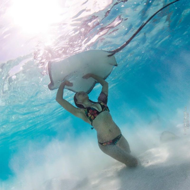 Rava Ray is a sexy model who currently live in Hawaii and she loves to work underwater. Rava has been featured in some of the sexiest underwater photos on the internet, and she's earned herself ...